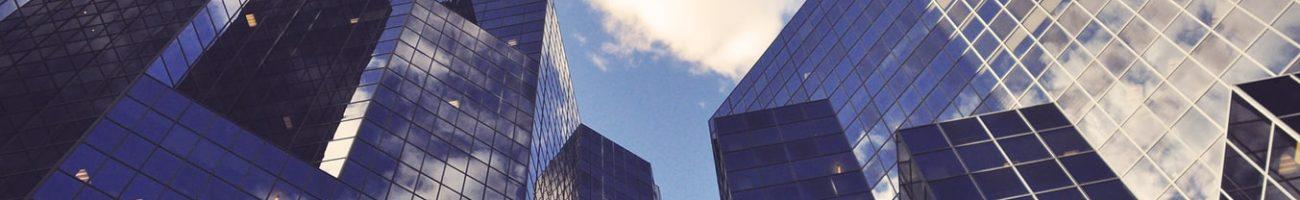 Консалтинг по лицензированию - один из видов услуг ООО